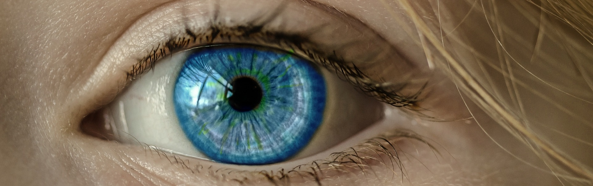 Augen1